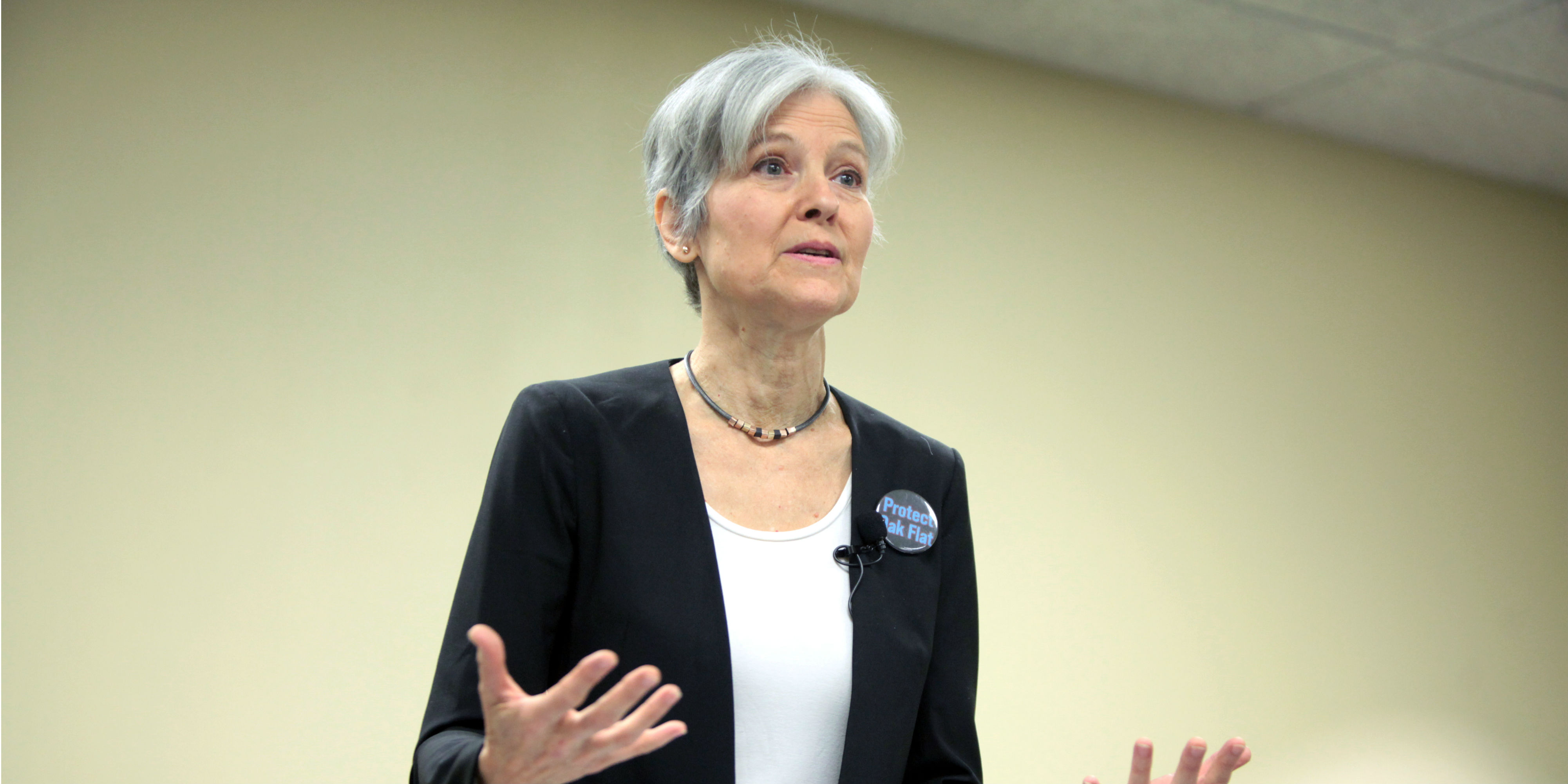jill-stein-small-business