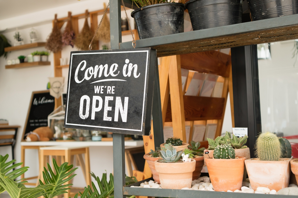 what-percentage-of-small-businesses-fail
