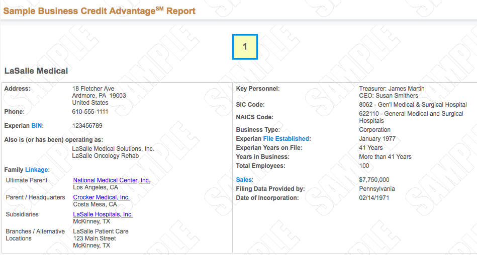 sample business credit report from experian - Apply For Business Credit Card With Duns Number