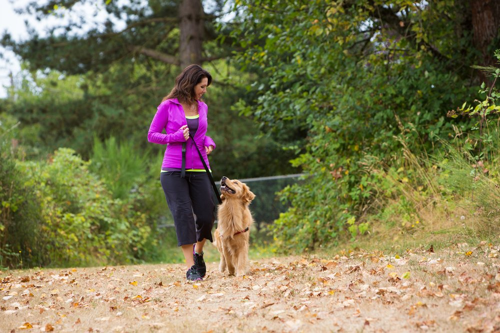 How to Start a Dog Walking Business in 5 Steps (Plus, How to